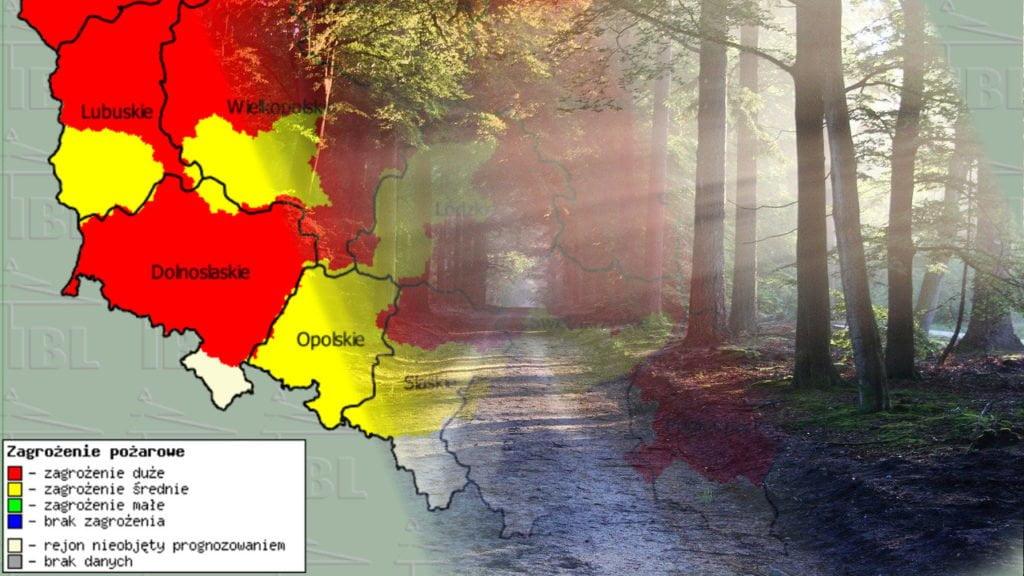 zagrożenie pożarowe w lasach