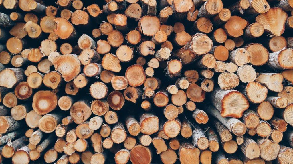 drewno z lasu