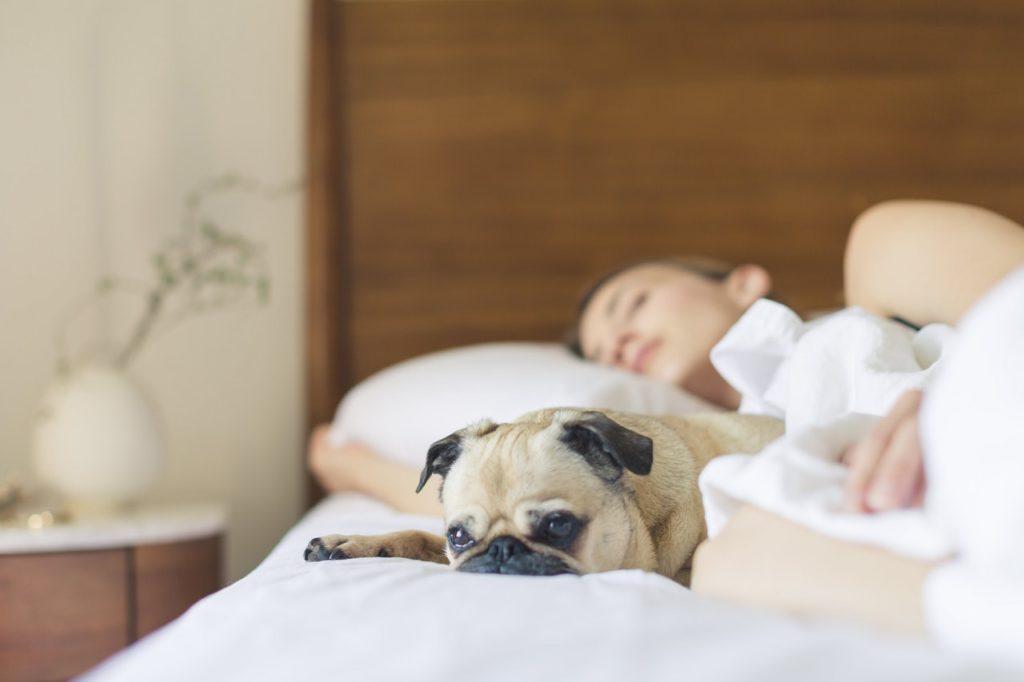 łózko sypialnia sen