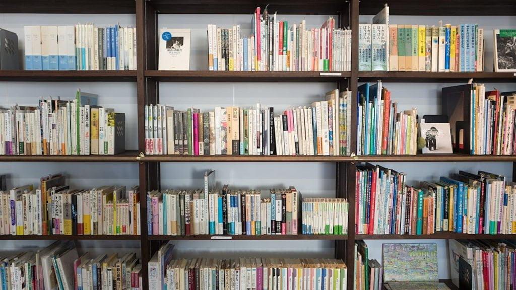 biblioteka w nowej soli
