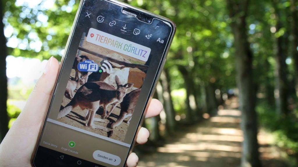 Nieograniczone podróże w cyfrowym zoo 1