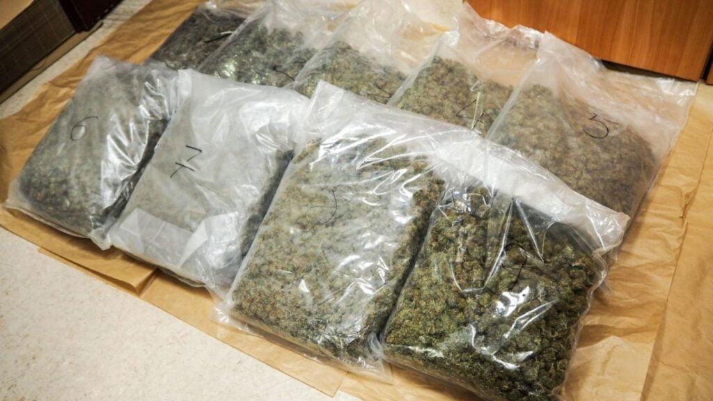 Bagażnik wypełniony marihuaną. Narkotyki były warte 500 tys. złotych