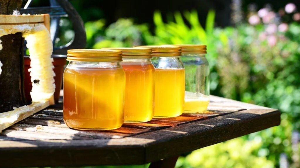 Lubomyśl: Kradł pszczołom miód