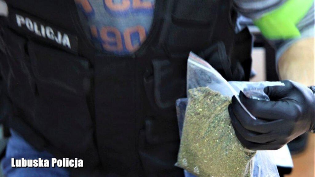 Lubsko: Diler zaatakował policjantów podczas zatrzymania. W mieszkaniu 43-latka znaleziono znaczne ilości narkotyków
