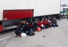 8 Afgańczyków ukrytych w naczepie tira